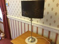 Lovely Table Lamp with Brown Shade
