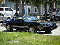 Miniature 14 Voiture Américaine de collection Pontiac Trans Am 1979