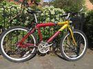 Concept Adult Bike
