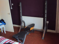 York Diamond Olympic Weight Bench With Exrta Preacher Curl Attach