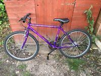 Purple rigid FALCON SCORPION men's teens mountain bike 18 gears ready to use immediately