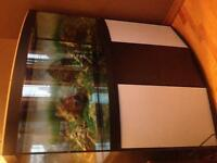 60 Gallon Bow Front Fish Tank with Stand