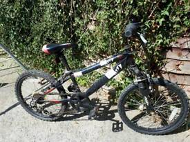 Boy's bike 20inch
