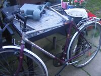 gents raleigh spirit this is not a mountain bike, rear carrier full gears good con