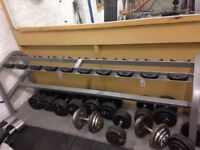 Cybex dumbell rack