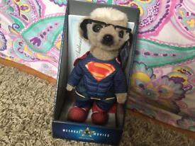 Meerkat Superman