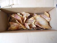new box of 20 dog pig ears, £6-. the lot