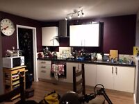 1 Room left, reduced to £450 inclusive of bills. Double room, newly renovated house