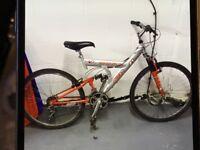 Adult Bike