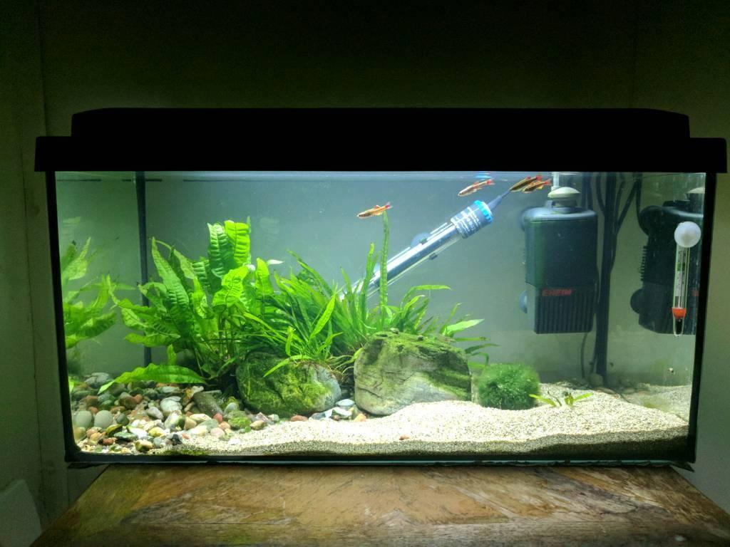Aquarium 54l Haustierbedarf Fische & Aquarien