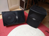 Peavey pvx 12 speakers (pair)