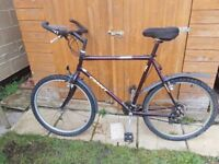 Gents Giant Mountain Bicycle with Mudguards Large Frame