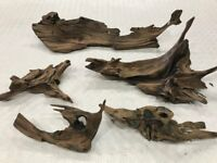 Aquarium Bogwood. 5 Large pieces. Used.