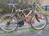 Raleigh MT260 Airlite Mountain Bike