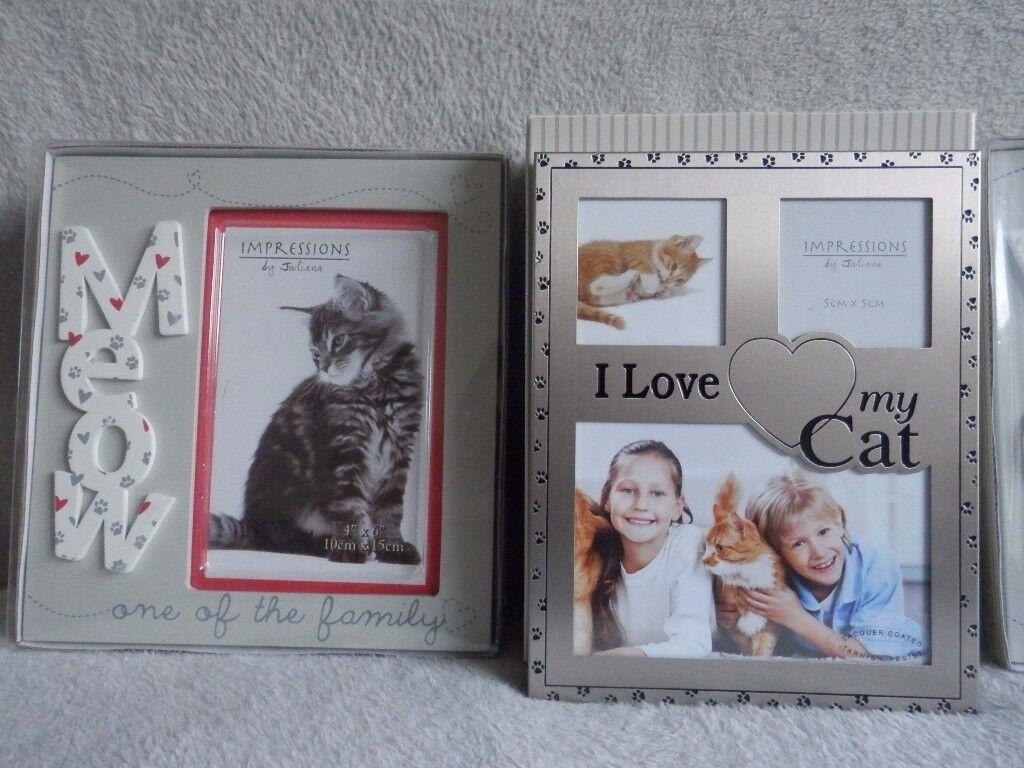 Various Photo Frames - Cat Dog The Girls 40th Birthday, 25, 40 & 50 Anniversary