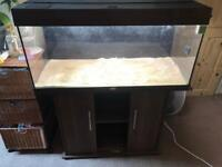 JUWEL RIO 180L, Filters, Heater, Lights, and cabinet ++ Loads of accessories