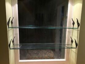 Glass shelves with wrought iron brackets