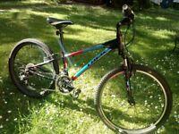 Boy's Trek Moutain Bike