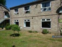 2 bedroom flat in Earlham Road, Norwich, NR4 (2 bed) (#888724)