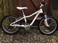 Specialized Hotrock mountain bike