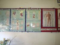 Physiotherapy Posters: Bill Board , Large & small posters of Indaian Massage.
