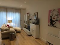 Christmas let - new house in Kemptown, Brighton