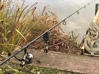 Diawa black widow carp rods and reels