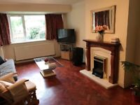 Large Single room for rent £495 pcm