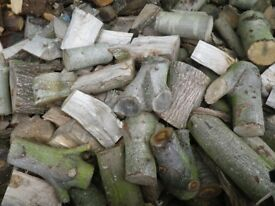 Firewood availible in various quanities, Hardwood, Softwood, Mixed, Log Burner Fuel, Norwich,Norfolk