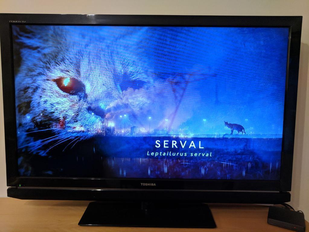 Image result for toshiba tv repair london
