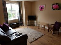 Flat mate to share 2 bed modern flat Holburn St, 500 pcm inc all utility bills and wifi.