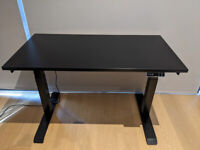 Electric Standing Desk (120x60cm, 125kg max load)