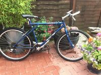 GT outpost mountain bike good brakes and tyres gears need attention but an easy fix. Some scratches