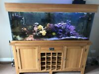 5 foot fish tank with oak cabinet