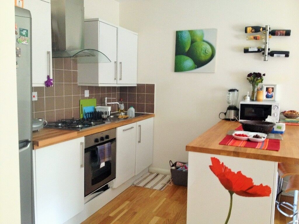 Spacious Light Double Room to Let £499 pcm