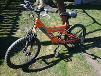 Raleigh mega max kids bike