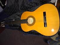 Palma PL44 guitar and case