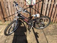 Trek MT220 girls mountain bike