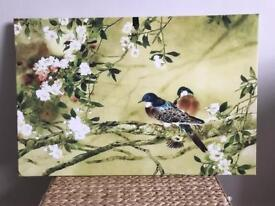 New Beautiful bird picture/canvas