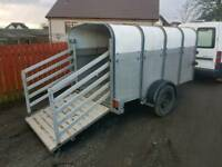 Ifor williams p8g livestock trailer has rear loading gates