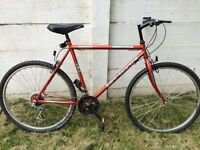 Bicycle in very good condition.