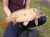 Ebro fishing buddy