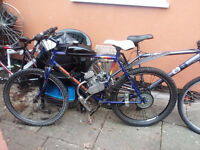 mountain bike with 80cc engine