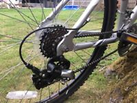 RALEIGH Aluminium frame mountain bike