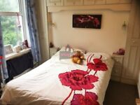 Large lovely double bedroom in house share available NOW!!