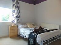 Stylish double in prof houseshare in Leicester