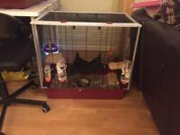 ferplast furat plus cage rat degu hamster mouse chinchilla ferret