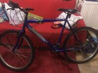 Mountain bike blue reef rrp£300