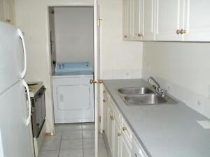 Updated and Newly Painted - Unfurnished 2 Bedroom