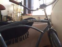 Johnny Loco - Earl Grey | Single speed | Beach Cruiser | Bike | Bicycle